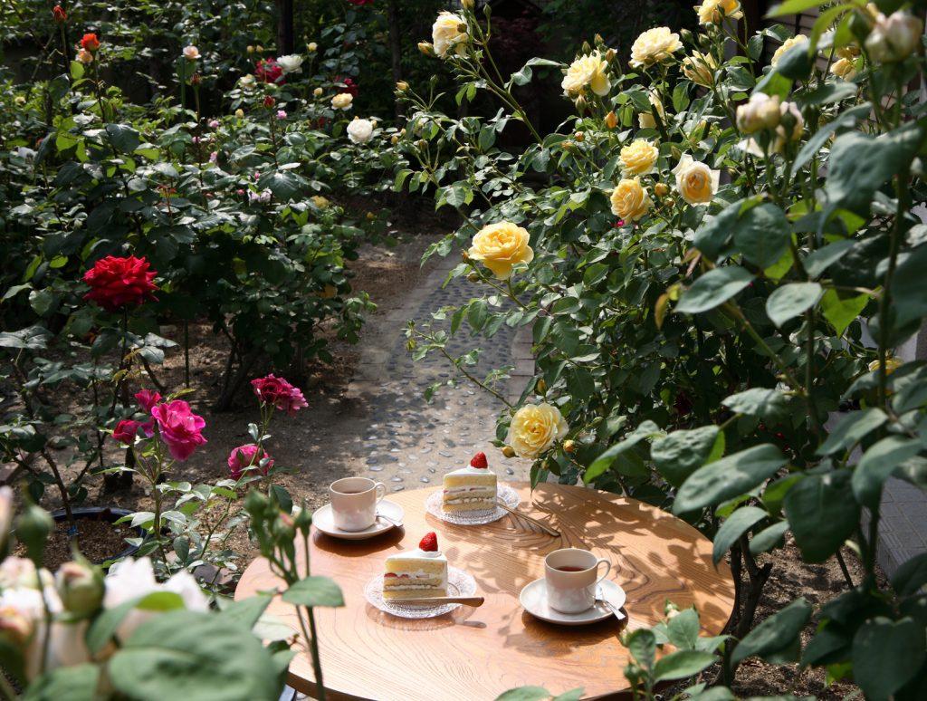 Rose Cutlery Top:バラのカトラリー Top